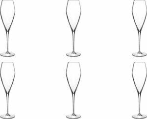 Luigi Bormioli Atelier Champagneglas Groot - 270 ml - 6 stuks