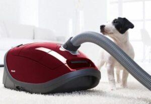stofzuiger voor hondenharen